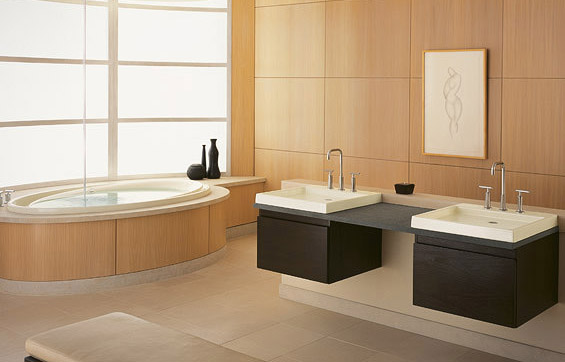 Minimalist bathroom designs bathroom remodeling ideas for Home spa bathroom ideas